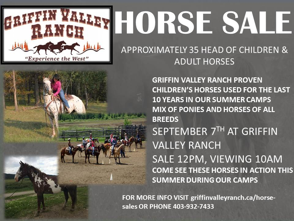 Griffin Valley Ranch|Calgary Summer Camps|Calgary Horse